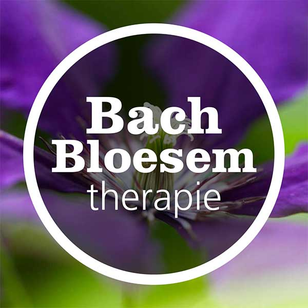 bach-bloesem-therapie-home