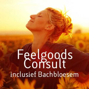 feelgoods-consult